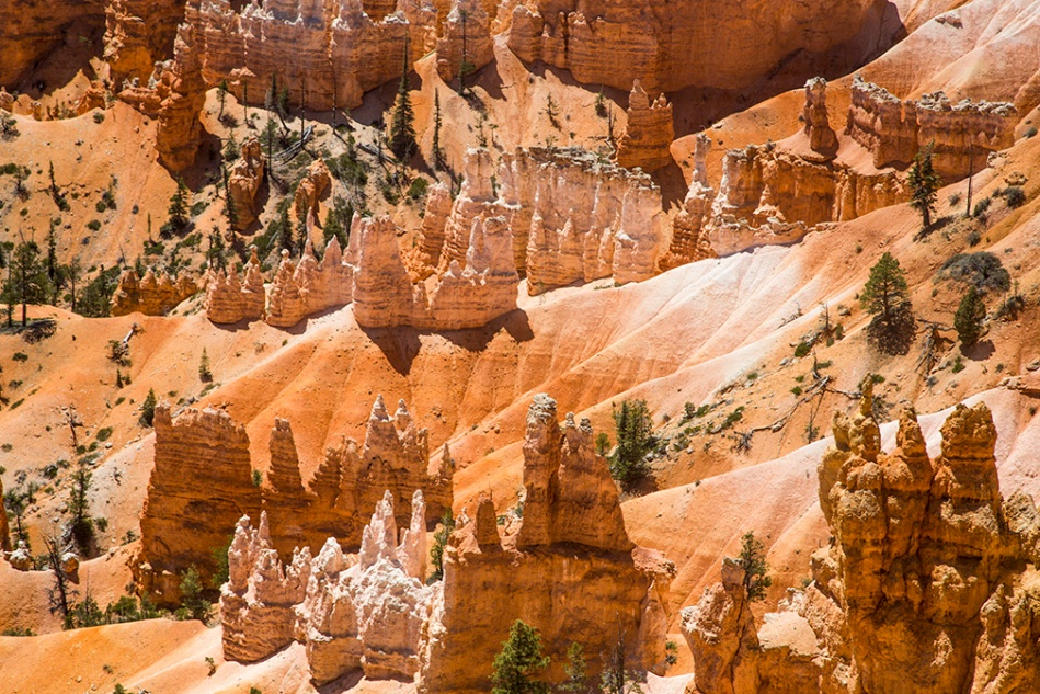 Bryce Canyon_0724