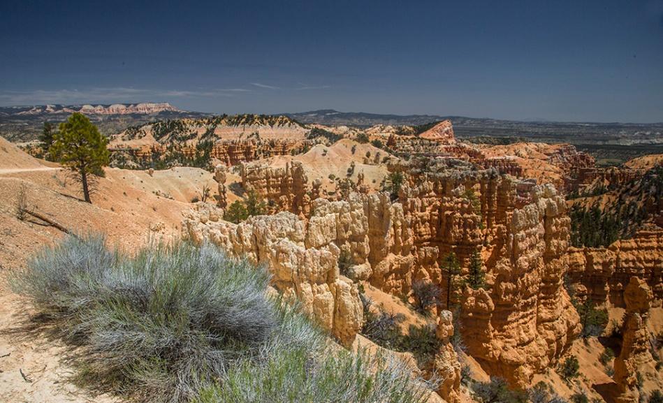 Bryce Canyon_0768