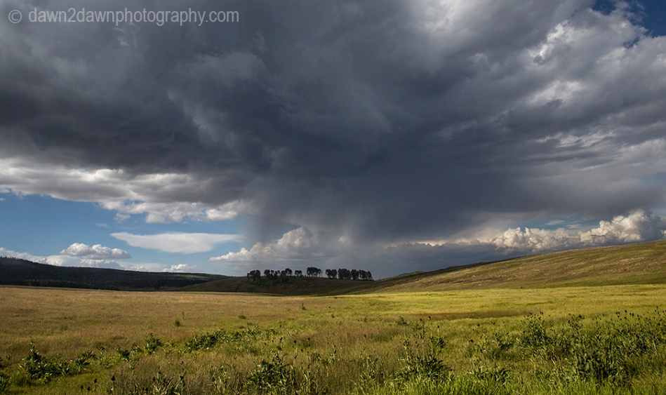 Stormy clouds approach a pasture at Kolob Terrace in the highlands of Southern Utah.