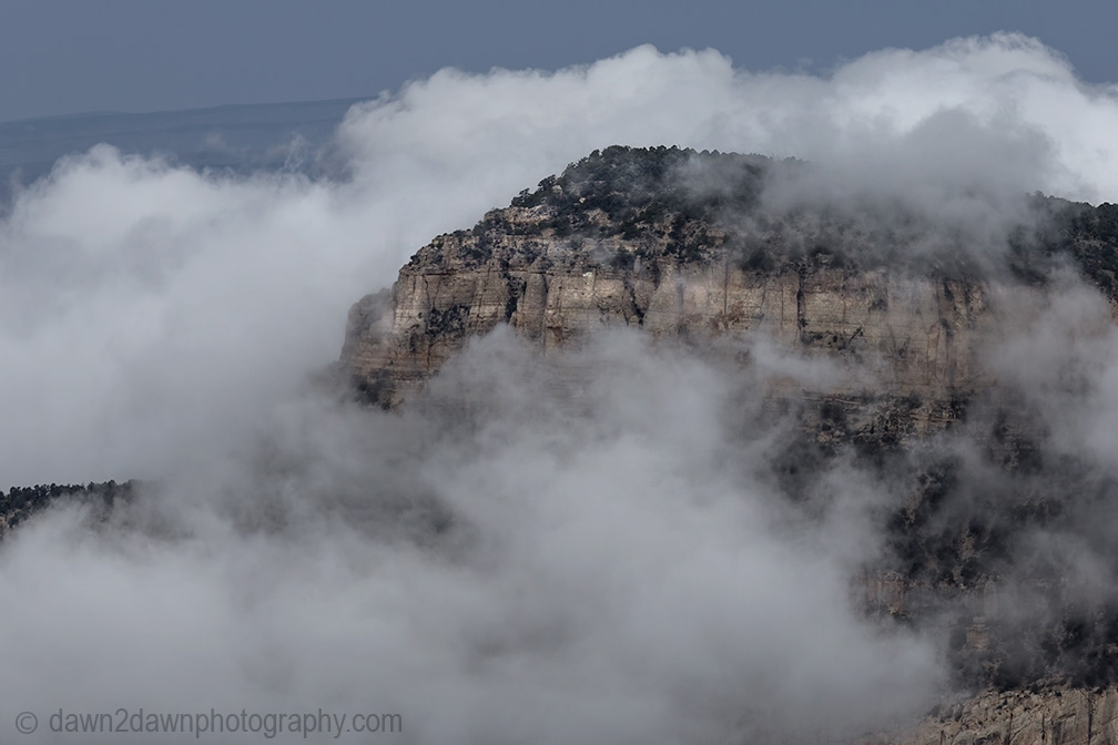 Fog rises from the bottom of the Grand Canyon at Timp Point,, Kaibab National Forest, Arizona