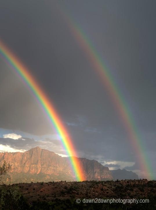 Zion Rainbow_2678