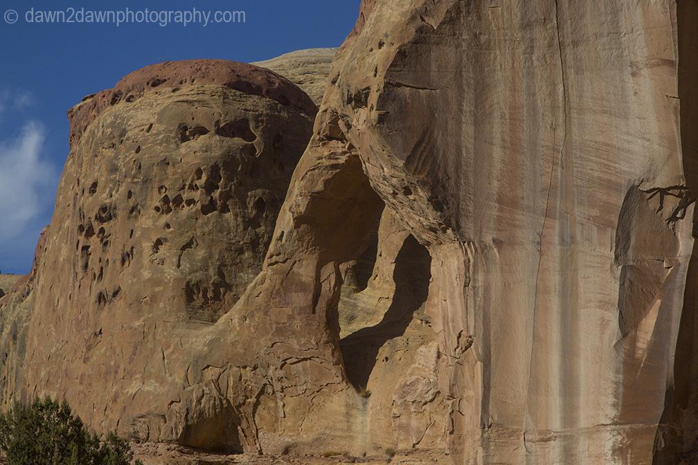 canyonlands-lavendar_6212