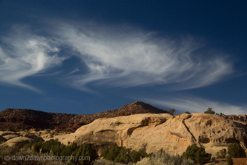 canyonlands-lavendar_6228