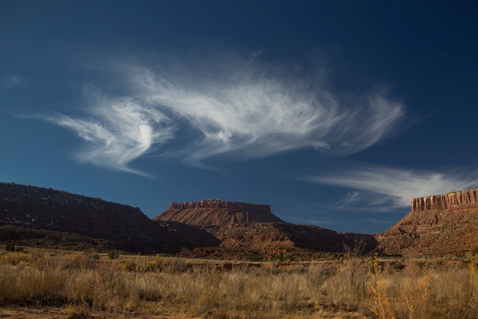 canyonlands-lavendar_6232