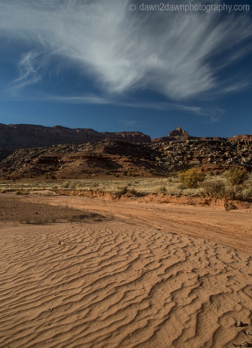 canyonlands-lavendar_6250