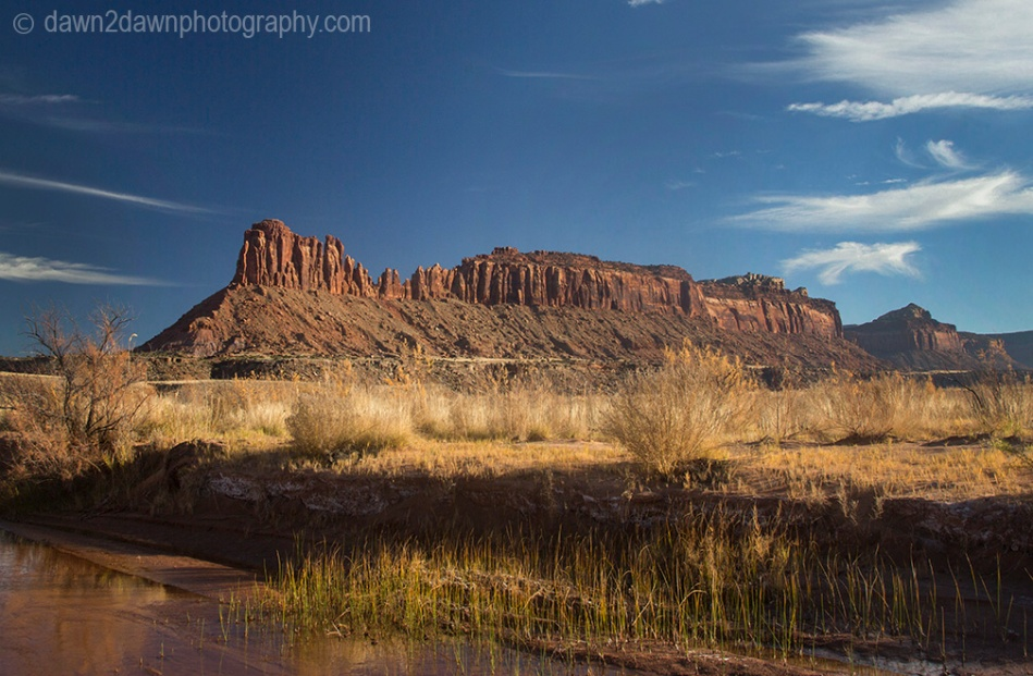 canyonlands-lavendar_6261
