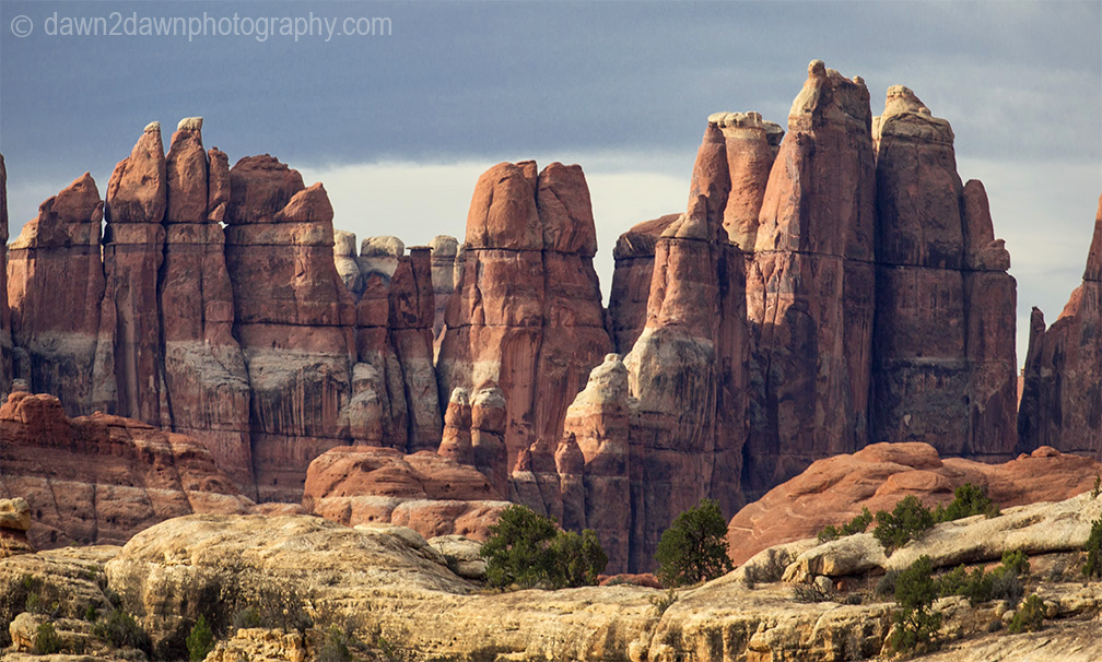 Unusually shaped and colored rock formations make up the landscape at the Needles District at Canyonlands National Park, Utah