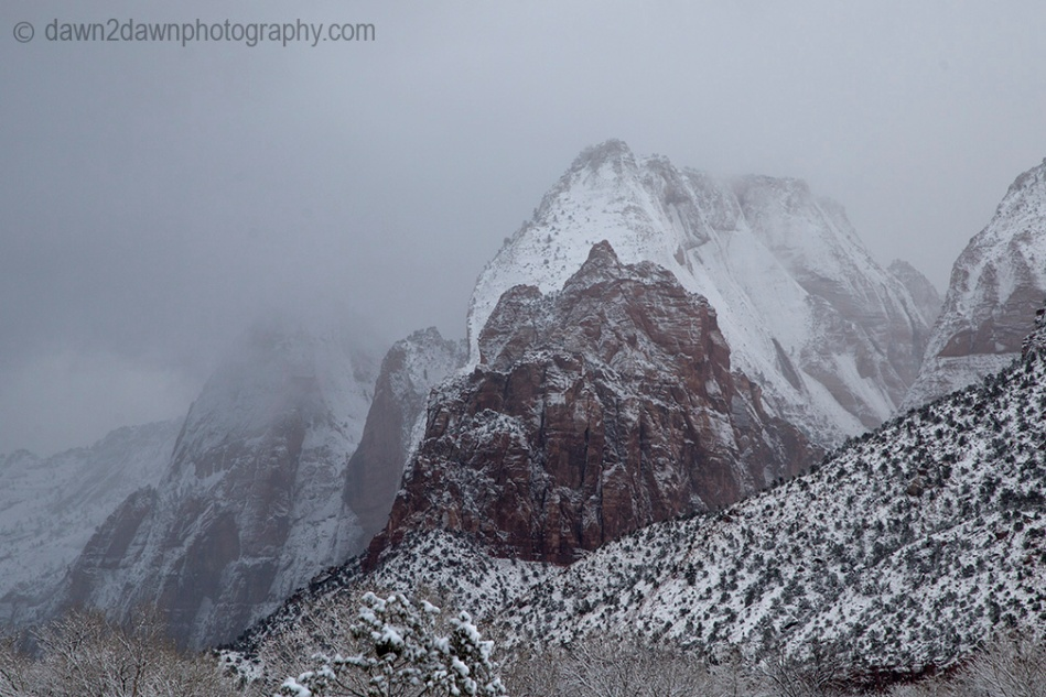 Fresh snow blankets Zion National Park on Christmas morning.