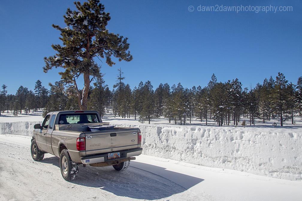 bryce-winter_8396
