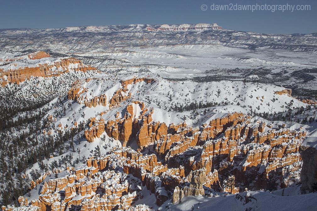 Fresh snow blankets Bryce Canyon National Park, Utah