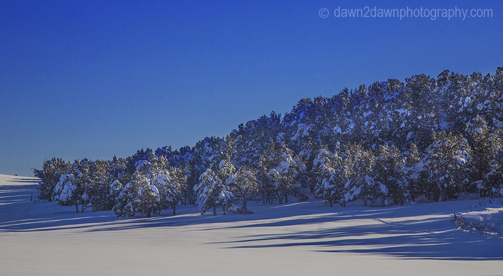 Fresh snow blankets the Southern Utah landscape