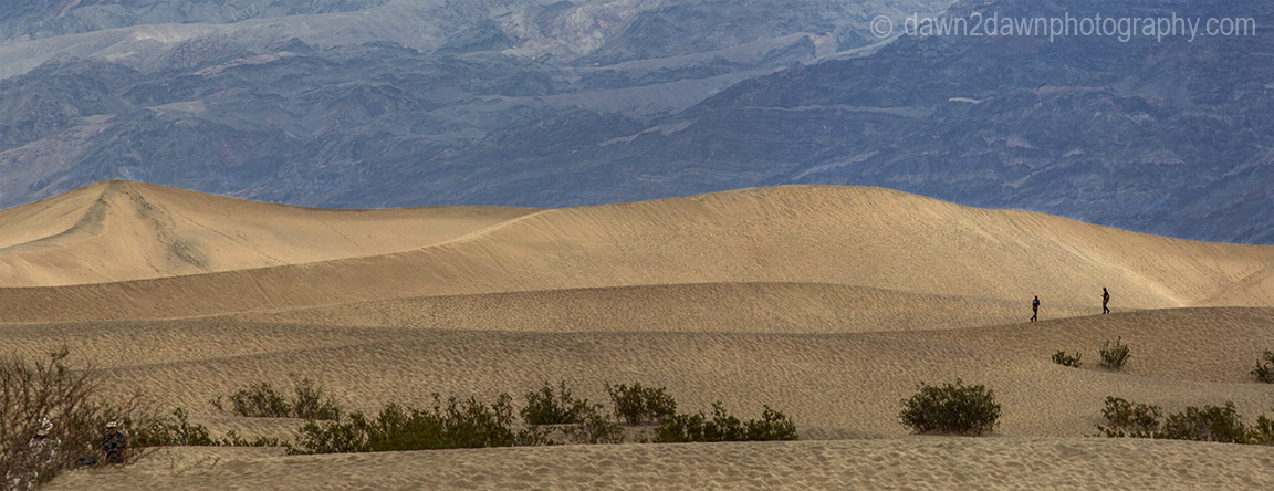 Visitors explore the Stovepipe Wells Sand Dunes at Death Valley National park, California