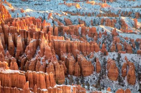 Fresh snow has fallen at sunrise at Bryce Canyon National Park, Utah