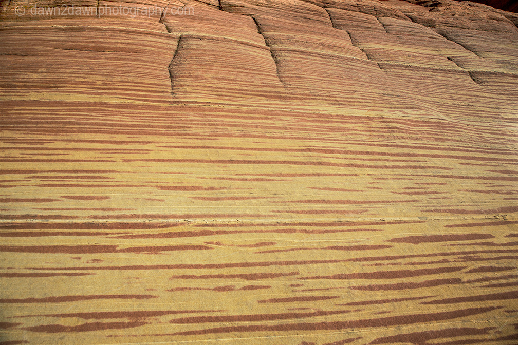 Coyote Buttes In The Abstract