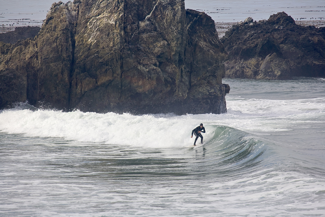Let's Go Surfing Now……..Or MaybeNot
