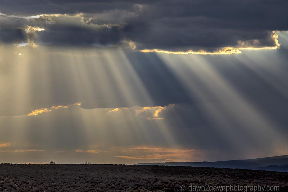 One Amazing LightShow