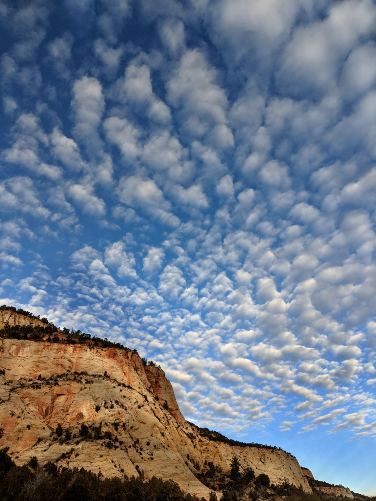 Funky Skies At Zion Today
