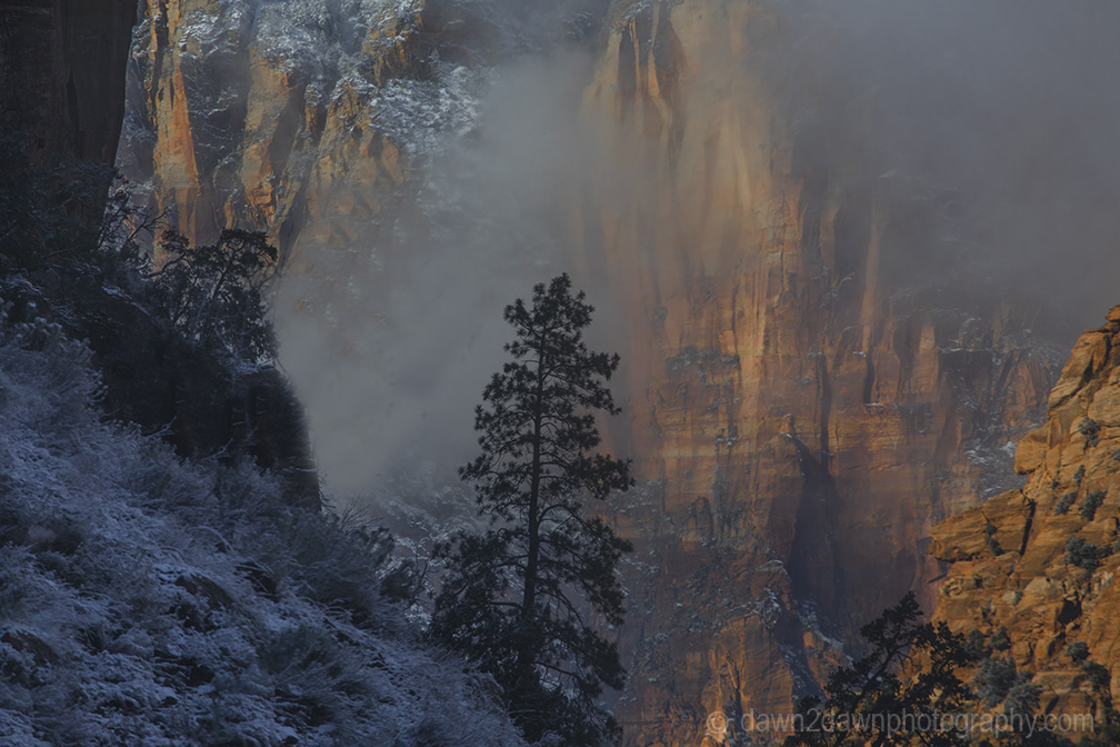 Zion Winter Day