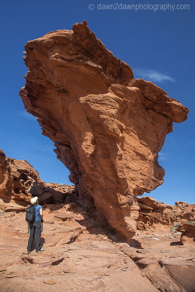 Gold Butte NationalMonument