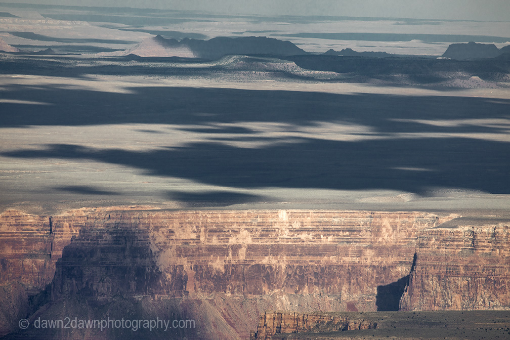 From The Kaibab NationalForest