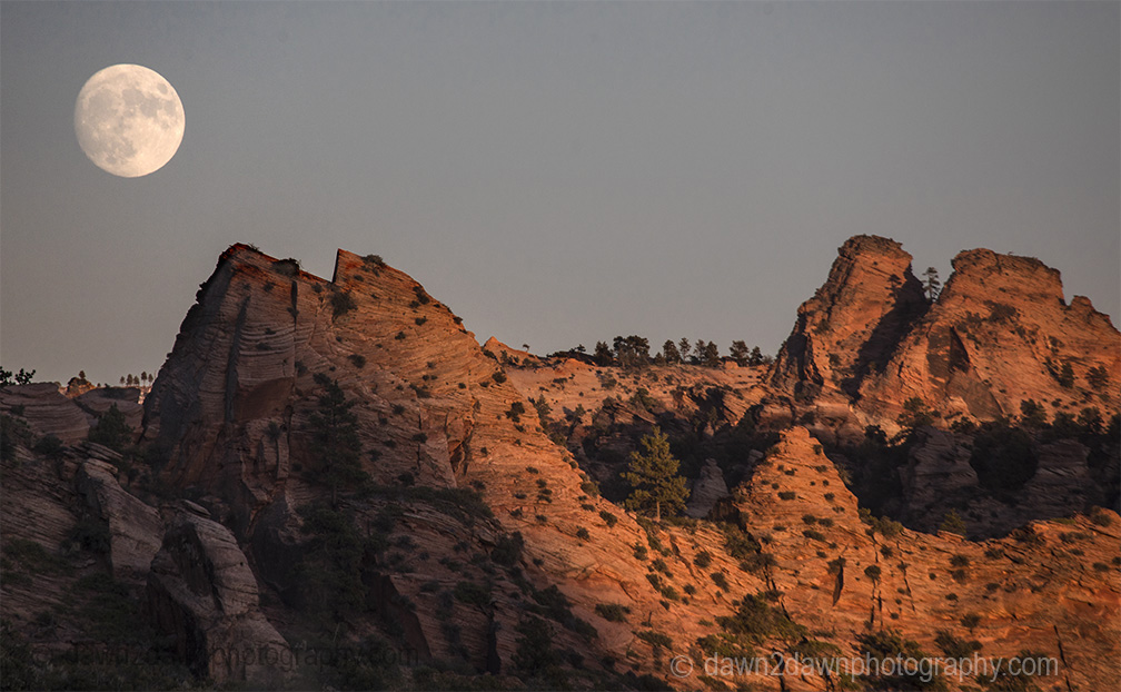 Moon Rising Over Zion NP